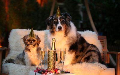 Silvester entspannt meistern