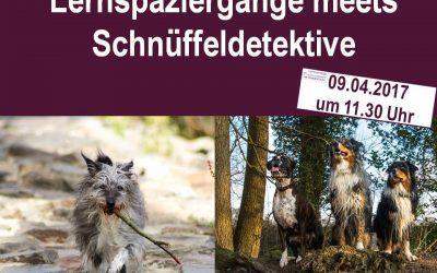 Lernspaziergänge meets Schnüffeldetektive