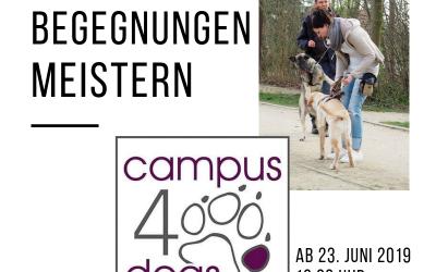 Hundebegegnungen meistern ab 23. Juni 2019