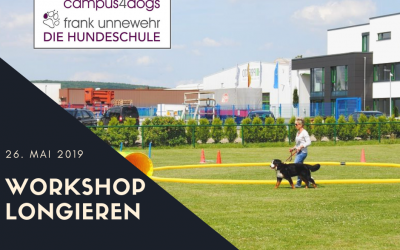 "Workshop ""Longieren"""