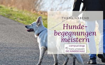 """Themenabend """"Hundebegegnungen – Körpersprache richtig verstehen und handeln"""""""