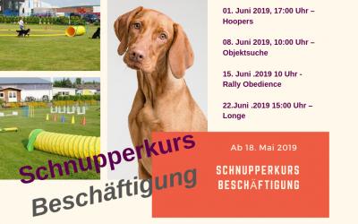 Schnupperkurs – Beschäftigung ab 18. Mai 2019