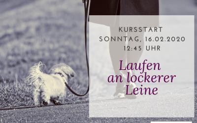 Laufen an lockerer Leine ab 16.02.2020