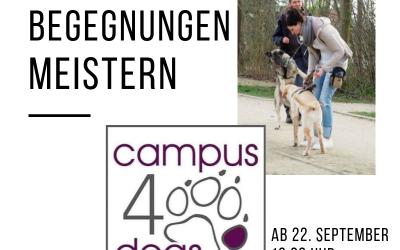 Hundebegegnungen meistern ab 22. September 2019