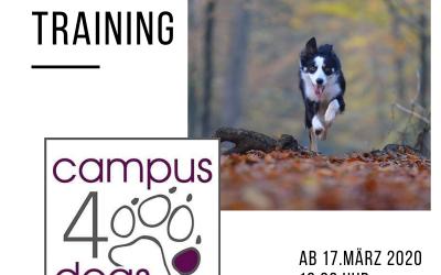 Rückruf-Training ab 17. März 2020