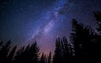 Spaziergang in die Nacht – 6. Juni