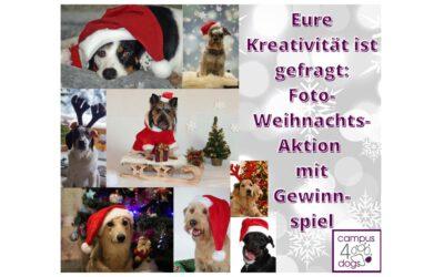 Foto-Weihnachtsaktion